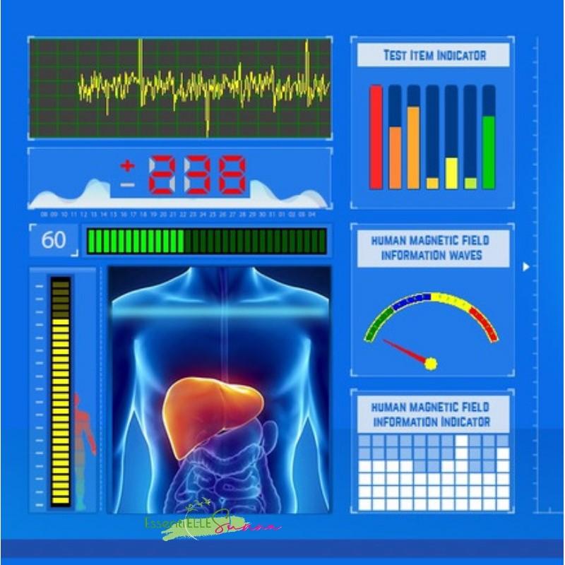 Analyseur quantique (Test Bilan)